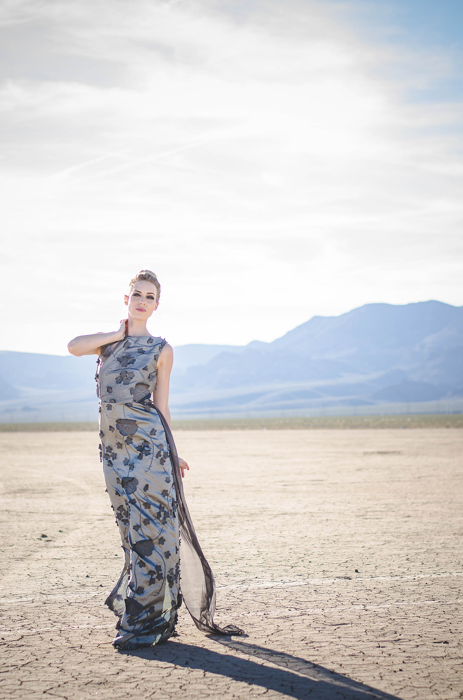 The Dry Lake Bed Chronicles Anjanette Arnold